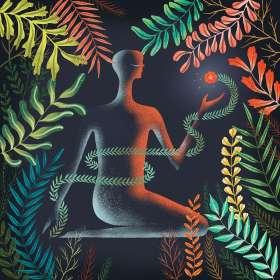 Loma: Don't Shy Away, CD