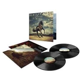 Bruce Springsteen: Western Stars, LP