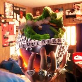 RIN (Hip Hop): Nimmerland, CD