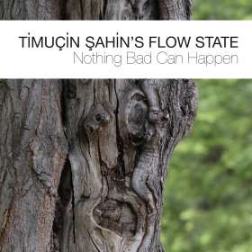 Timucin Sahin (geb. 1973): Nothing Bad Can Happen, CD