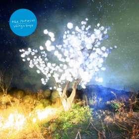 The Notwist: Vertigo Days, CD