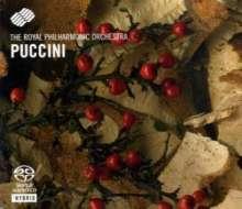 Puccini-Highlights, SACD