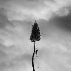 Manchester Orchestra: A Black Mile To The Surface, CD