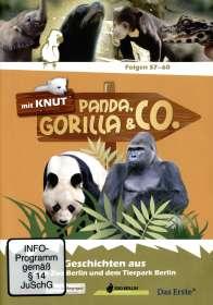 Panda, Gorilla & Co. Vol.7 (Folgen 57-60), DVD
