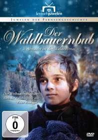 Hermann Leitner: Der Waldbauernbub - Weihnacht in der Waldheimat, DVD