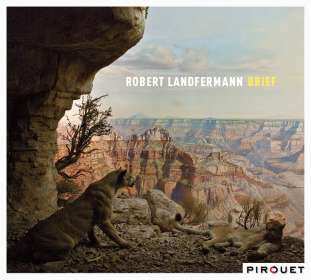 Robert Landfermann: Brief, CD