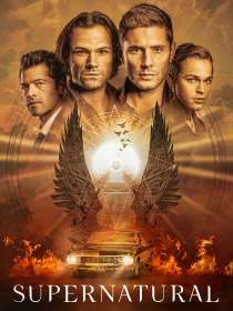 Supernatural Season 15 (final Season) (UK Import), DVD