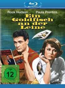 Howard Hawks: Ein Goldfisch an der Leine (Blu-ray), BR