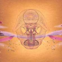 Devendra Banhart: What Will We Be, CD