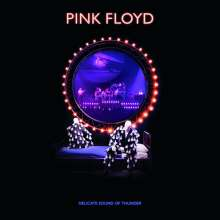 Pink Floyd: Delicate Sound Of Thunder: Live, 2 CDs