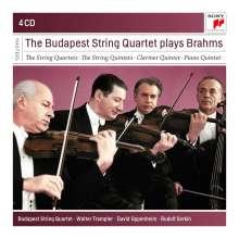 Johannes Brahms (1833-1897): Streichquartette Nr.1-3, 4 CDs