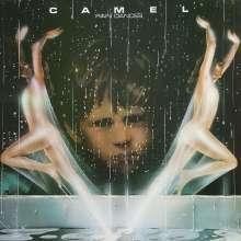 Camel: Rain Dances, LP