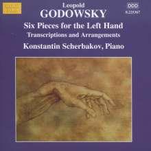 Leopold Godowsky (1870-1938): Klavierwerke Vol.13 (Transkriptionen & Arrangements), CD