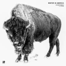 Johannes Brecht/feat. Fetsum: Winter In America (White Vinyl), Single 12""