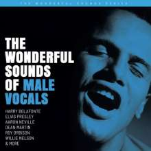 The Wonderful Sounds Of Male Vocals (200g) (Limited Edition), 2 LPs