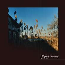 The Cinematic Orchestra: Ma Fleur, 2 LPs