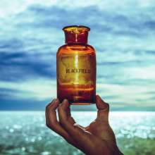 Blackfield  (Steven Wilson): Blackfield V (Reissue 2019), CD