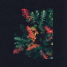 Dark Sky: Othona, 2 LPs