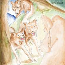 Bonnie 'Prince' Billy: Wolf Of The Cosmos, LP