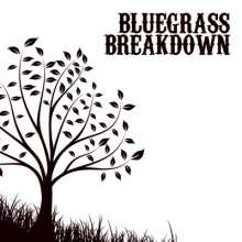Bluegrass Breakdown, CD