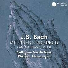 Johann Sebastian Bach (1685-1750): Kantaten BWV 8,125,138, CD