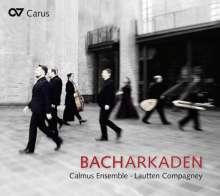 Calmus Ensemble Leipzig & Lautten Compagney Berlin - Bacharkaden, CD