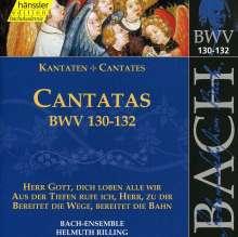 Johann Sebastian Bach (1685-1750): Die vollständige Bach-Edition Vol.41 (Kantaten BWV 130-132), CD