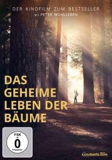 Das geheime Leben der Bäume, DVD