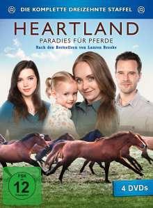 Heartland - Paradies für Pferde Staffel 13, 4 DVDs
