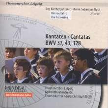 Thomanerchor Leipzig - Das Kirchenjahr mit Bach Vol.6, CD