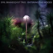 Emil Brandqvist (geb. 1981): Entering The Woods, CD