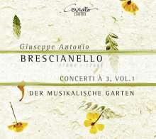 Giuseppe Antonio Brescianello (1690-1758): Concerti a 3 Vol. 1, CD