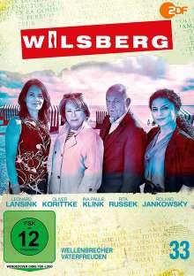 Wilsberg DVD 33: Wellenbrecher / Vaterfreuden, DVD