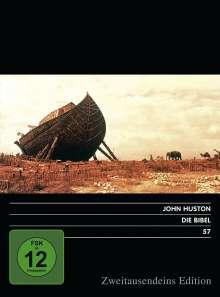 Die Bibel, DVD