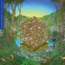 Oliver Koletzki: Made Of Wood, 2 LPs