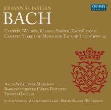 Johann Sebastian Bach (1685-1750): Kantaten BWV 12 & 147, CD