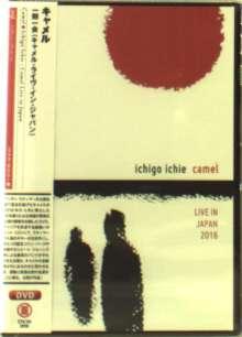Camel: Ichigo Ichie :  Camel Live In Japan 2016 (REGION-2), DVD