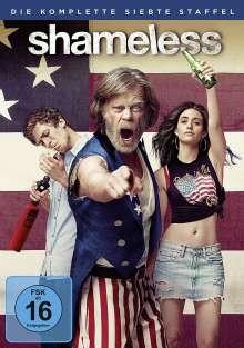 Shameless Staffel 7, 3 DVDs