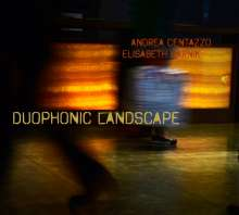 Andrea Centazzo & Elisabeth Harnik: Duophonic Landscape, CD