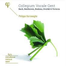 Philippe Herreweghe & Collegium Vocale Gent - 50th Anniversary, 6 CDs