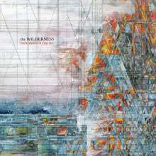 Explosions In The Sky: The Wilderness (Limited Edition) (Red/Clear Vinyl), 2 LPs