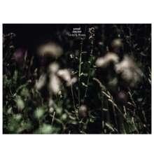 Anneli Drecker: Rocks & Straws, 1 LP und 1 CD