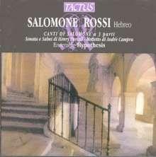 Salomone Rossi (1570-1630): The Songs of Solomon, CD