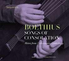 Ensemble Sequentia - Boethius, Songs of Consolation (Metra from 11th-Century Canterbury), CD