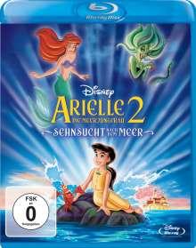 Arielle die Meerjungfrau 2: Sehnsucht nach dem Meer (Blu-ray), Blu-ray Disc