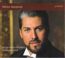 "Giuseppe Verdi (1813-1901): Arien für Tenor ""La mia letizia infondere"", CD"