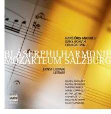 Ludwig Ernst Leitner (geb. 1943): Werke mit Bläsern, 6 CDs