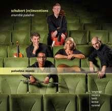 Ensemble Paladino - Schubert (re)inventions, 2 CDs