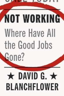 David G. Blanchflower: Not Working, Buch