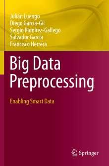 Julián Luengo: Big Data Preprocessing, Buch